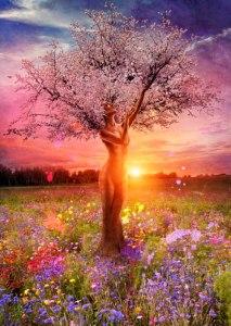 divine feminine hearts